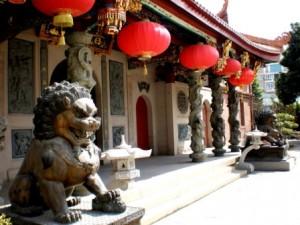 Język chiński IN WONDERLAND