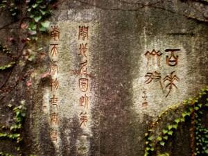 Język chiński na Żoliborzu IN WONDERLAND